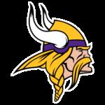Minnesota Vikings store